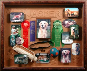 Shadowboxes display a collection with style